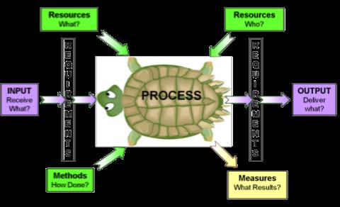 turtle-diagram