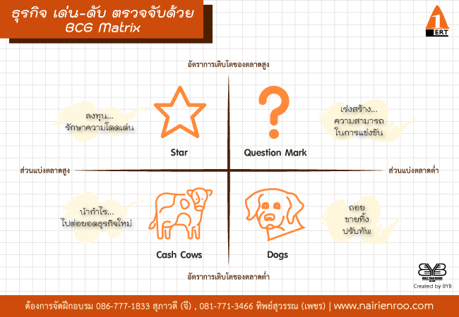 BCG Matrix co